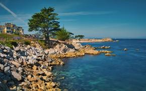 Picture coast, CA, USA, Monterey Bay