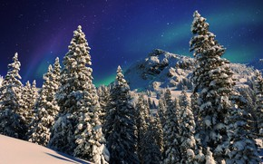 Picture winter, the sky, snow, trees, landscape, mountains, nature, stars, Northern lights, ate
