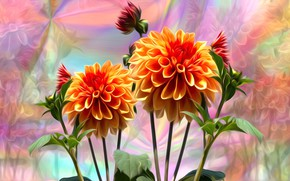 Picture leaves, flowers, rendering, background, stems, petals, buds, dahlias, colored background