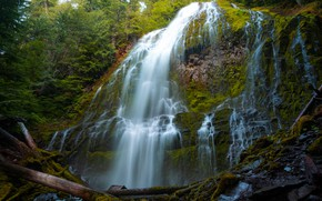 Picture rocks, vegetation, waterfall