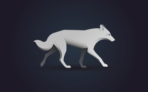 Picture animals, white, wolf, minimalism, white wolf