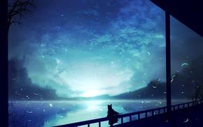 Picture night, silhouette, girl, Touhou, Touhou