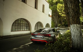 Picture wall, tree, Audi, coupe, shadow, 2020, RS e-Tron GT Prototype