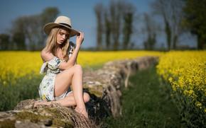 Picture sexy, hat, legs, beauty, bokeh