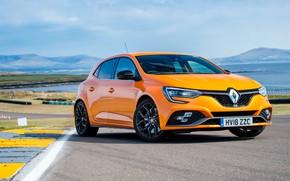 Picture Renault, hatchback, 2018, Megane RS, 280 Cup