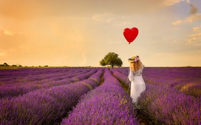 Picture field, girl, flowers, back, ball, lavender