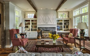 Picture room, interior, fireplace, library, living room