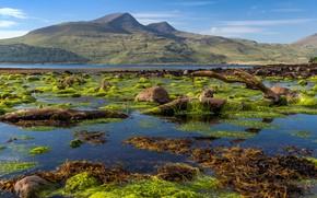 Picture Scotland, Isle of Mull coastline, Killunaig
