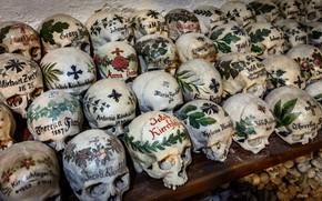 Picture background, bones, skull