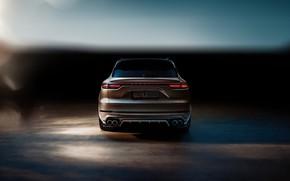 Picture Porsche, rear view, Turbo, 2018, Cayenne, TechArt