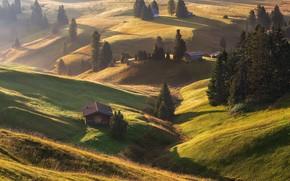 Picture Italy, Dolomites, Alpe di Siusi