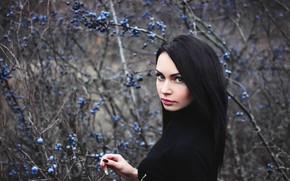 Picture look, berries, Girl, brunette