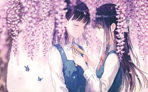 Picture Flowers, Girls, Butterfly, Form, Wisteria