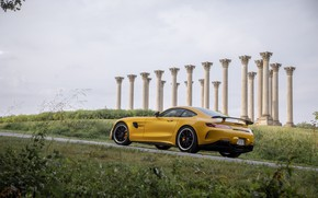 Picture Mercedes-Benz, rear view, AMG, GT R, 2020