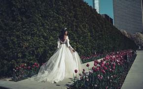 Picture summer, girl, flowers, nature, pose, Park, model, back, dress, tulips, wedding