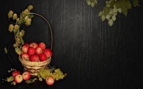 Picture nature, mood, apples, beauty, basket, beautiful, beautiful, beauty, harmony, the Wallpapers, cool, bouquet, nice, elegantly, …