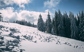 Picture winter, forest, the sky, clouds, light, snow, mountains, the building, mountain, ate, slope, the snow, …