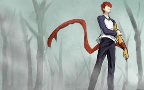 Picture forest, fog, guy, Emiya Shirou, Fate stay night, Fate / Stay Night