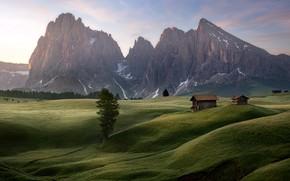 Picture sunrise, Alpe di Siusi, alpine meadow