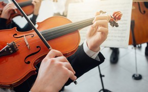 Picture Violin, Concert, Скрипач