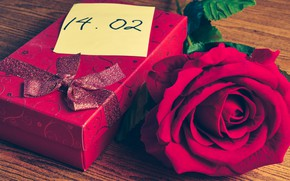 Picture flowers, gift, heart, rose, red, love, red, heart, flowers, romantic, valentine's day, gift, roses