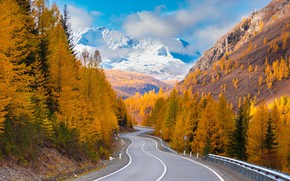 Picture road, autumn, forest, clouds, mountains, Altay