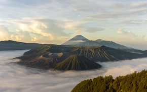 Picture greens, the sky, clouds, trees, mountains, hills, height, the volcano, Indonesia, Bromo, Indonesia, Bromo