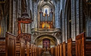 Picture France, Paris, interior, Paris, religion, France, interior, christian, Christianity, religious, Hours, Cathedral Notre Dame de …