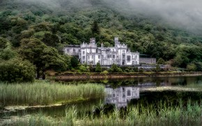 Picture forest, grass, fog, lake, pond, reflection, castle, thickets, shore, slope, hill, architecture, pond