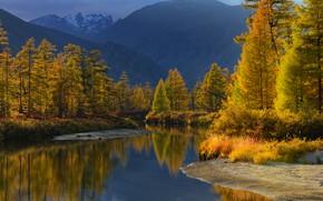 Picture autumn, forest, water, light, mountains, nature, river, Maxim Evdokimov