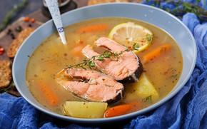 Picture lemon, fish, soup, ear, salmon