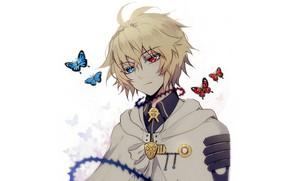 Picture butterfly, The Last Seraphim, Owari no Seraph, Michaela Hakua, Hyakuya Mikaela