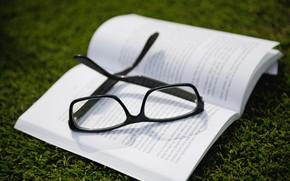 Picture Nature, Grass, Mood, Glasses, Book