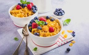 Picture berries, raspberry, Breakfast, blueberries, cereal, milk, Iryna Melnyk