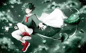 Picture MAG, My Hero Academia, Boku No Hero Academy, Midori Isuku, My Hero Academy