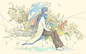 Picture guy, Vocaloid, Kaito
