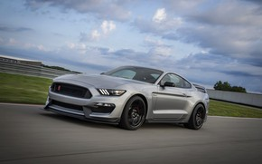 Picture grey, movement, Mustang, Ford, Shelby, GT350R, 2020