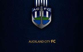 Picture wallpaper, sport, logo, football, Auckland City