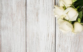 Picture table, background, roses, wooden, white, buds, Olena Rudo