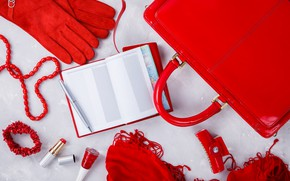 Picture red, style, gloves, Notepad, bag, accessories, Olena Rudo