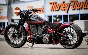 Picture Bike, Harley-Davidson, Custom, Softail, Thunderbike, Nobleout