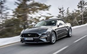 Wallpaper road, Ford, convertible, 2018, dark gray, Mustang GT 5.0 Convertible