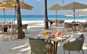 Picture beach, palm trees, the ocean, The Maldives, resort, tables, ресторан на пляже