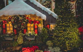 Picture roof, light, snow, night, lights, house, holiday, plants, garden, Christmas, New year, boxes, house, herringbone, …