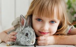 Picture look, rabbit, girl