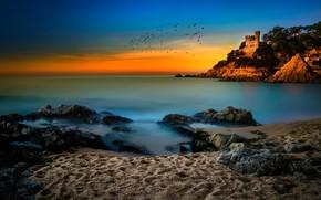 Picture sand, sea, beach, the sky, flight, landscape, sunset, birds, blue, castle, rocks, shore, treatment, pack, …
