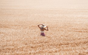 Picture BLONDE, FIELD, MOOD, HAT, DAL, SPIKELETS