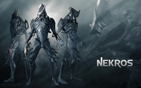 Picture grey, being, soldiers, cyborg, character, Warframe