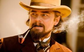 Picture tube, actor, beard, Western, movie, Leonardo DiCaprio, leonardo dicaprio, django unchained, Django unchained, Calvin candy, …