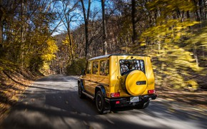 Wallpaper autumn, Mercedes-Benz, rear view, AMG, G-Class, Gelandewagen, G63, 2017, Colour Edition